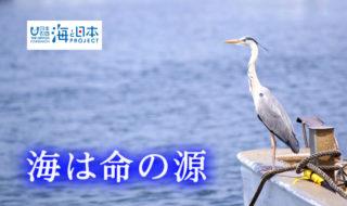 福岡県-B05-s1