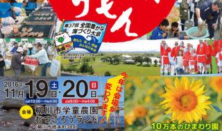 H28柳川まつり-B2 最終(サイズ小)