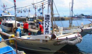 相島の漁師直売